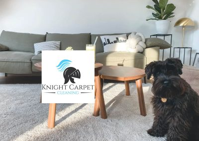 Knight Carpet Cleaning